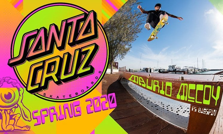 Satna Cruz Skateboards 2020