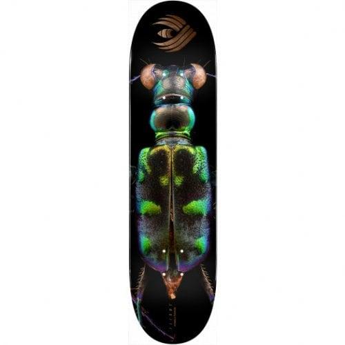 Tabla Powell Peralta: Biss Tiger Beetle 248 8.25x31.95